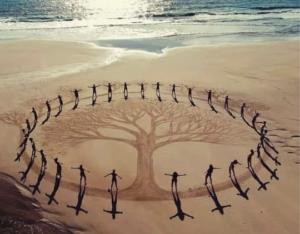 Poèsies et Cercle arbre Biodanza Gérard nord-Pas de Calais